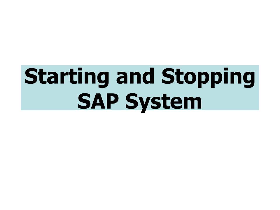 Start SAP : UNIX Server