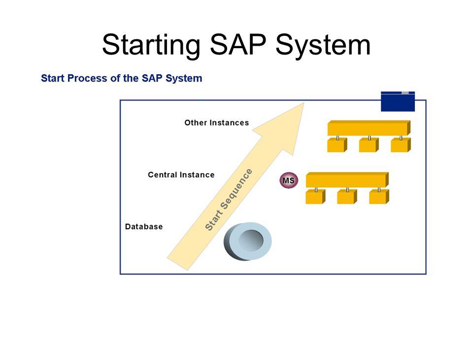 Starting SAP System