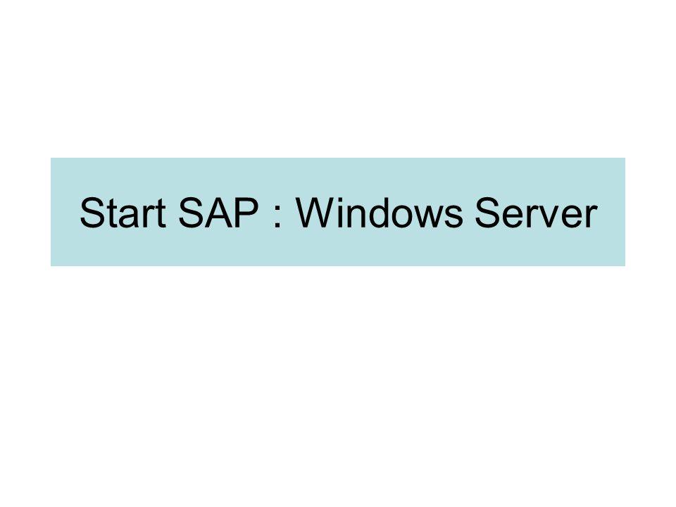 Windows Service : SAP/Oracle RDBMS