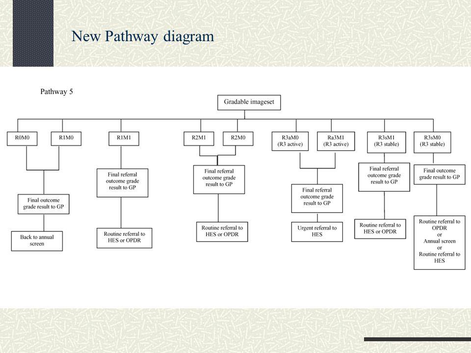 New Pathway diagram