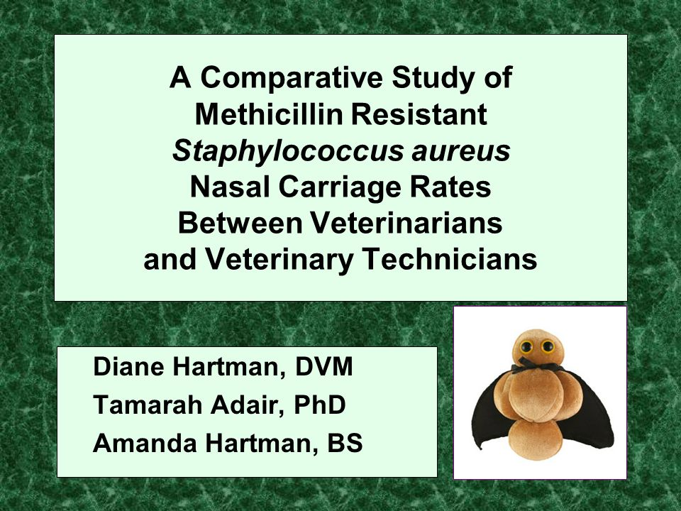 A Comparative Study of Methicillin Resistant Staphylococcus aureus Nasal Carriage Rates Between Veterinarians and Veterinary Technicians Diane Hartman, DVM Tamarah Adair, PhD Amanda Hartman, BS