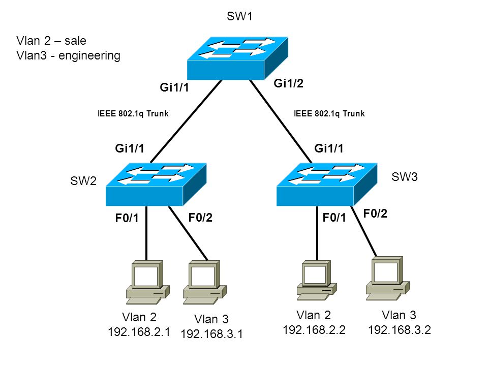 Vlan 2 192.168.2.1 Vlan 2 192.168.2.2 F0/1 Gi1/1 F0/1 Gi1/1 Gi1/2 IEEE 802.1q Trunk Vlan 2 – sale Vlan3 - engineering Vlan 3 192.168.3.1 Vlan 3 192.168.3.2 F0/2 SW1 SW2 SW3