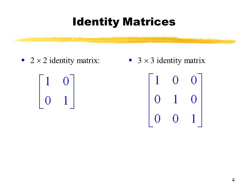 4 Identity Matrices  2  2 identity matrix:  3  3 identity matrix