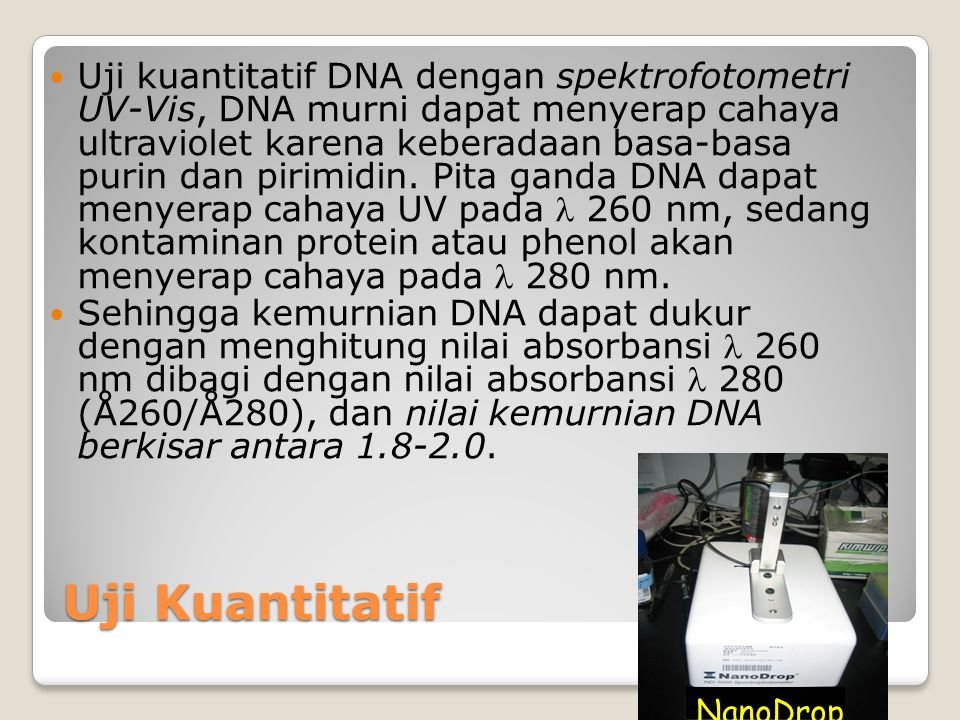 Uji kualitatif dan kuantitatif DNA dan RNA Fatchiyah, PhD JBUB, fatchiya@yahoo.co.id