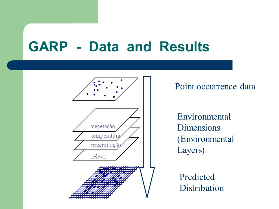 GARP - Data and Results Point occurrence data Predicted Distribution Environmental Dimensions (Environmental Layers) vegetação temperatura precipitaçã
