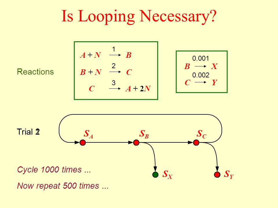 Is Looping Necessary? A + N B + N CA + 2N B C B C X Y 1 2 3 0.001 0.002 Reactions SASA SBSB SCSC SXSX SYSY Trial 1 Now repeat 500 times... Cycle 1000