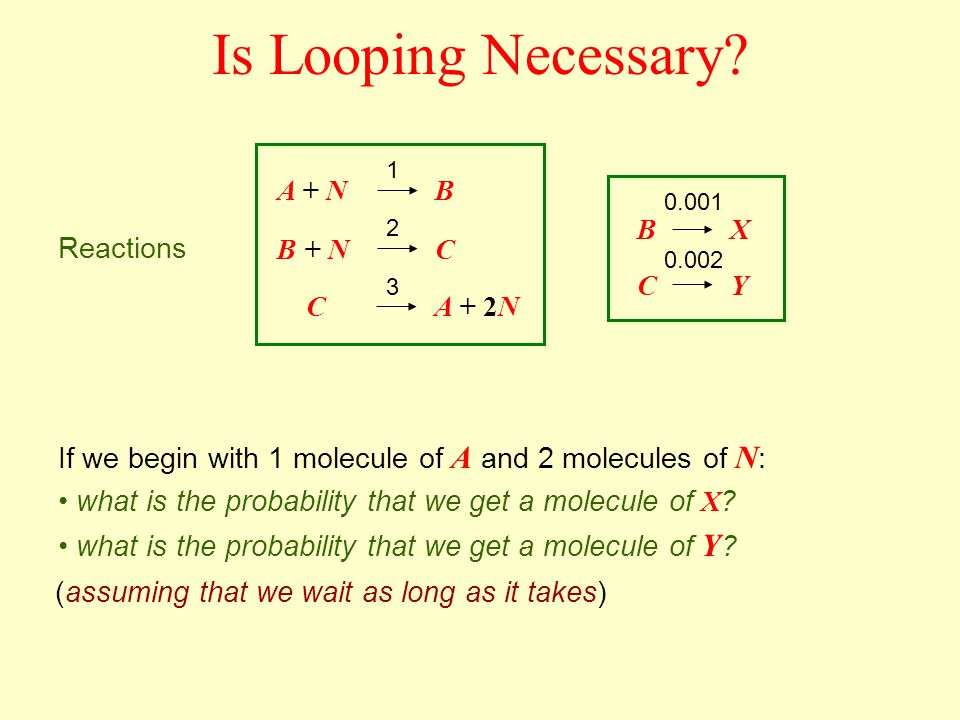 Is Looping Necessary? A + N B + N CA + 2N B C B C X Y 1 2 3 0.001 0.002 Reactions If we begin with 1 molecule of A and 2 molecules of N : what is the