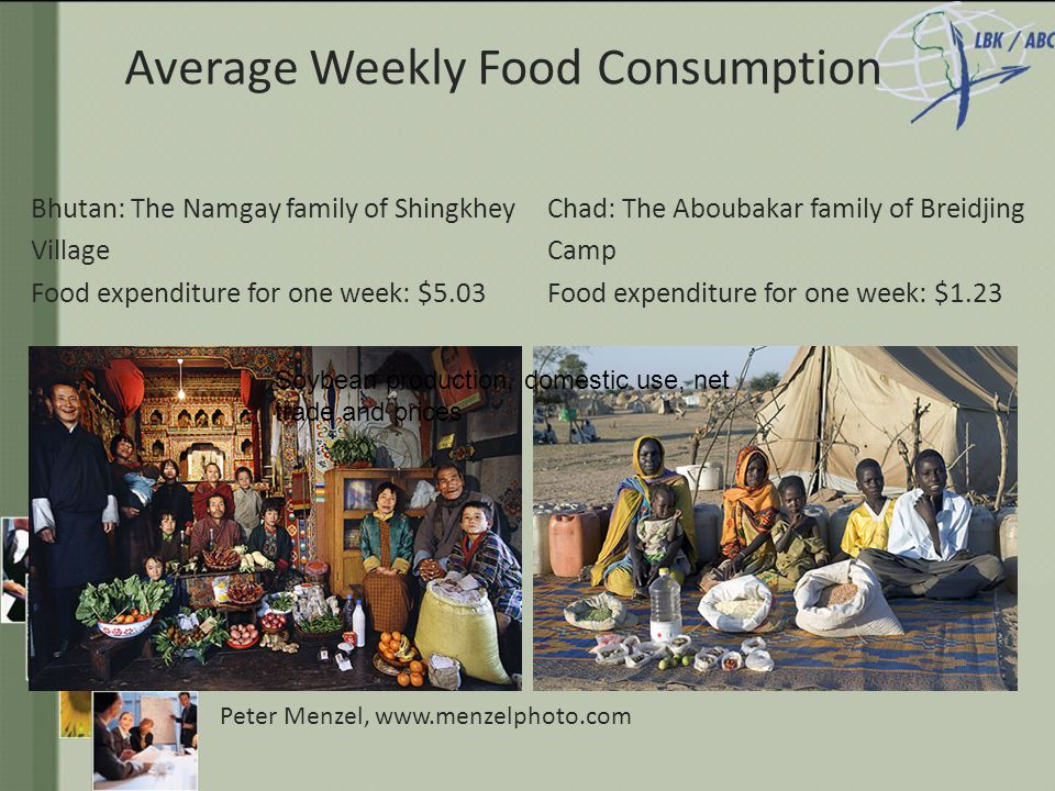 Average Weekly Food Consumption Bhutan: The Namgay family of Shingkhey Village Food expenditure for one week: $5.03 Chad: The Aboubakar family of Breidjing Camp Food expenditure for one week: $1.23 Peter Menzel, www.menzelphoto.com Soybean production, domestic use, net trade and prices