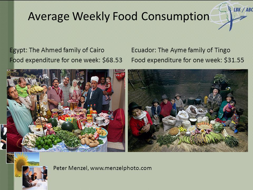 Average Weekly Food Consumption Egypt: The Ahmed family of Cairo Food expenditure for one week: $68.53 Ecuador: The Ayme family of Tingo Food expenditure for one week: $31.55 Peter Menzel, www.menzelphoto.com