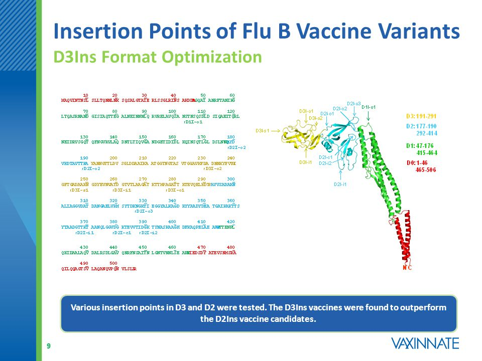 Insertion Points of Flu B Vaccine Variants D3Ins Format Optimization 10 ConstructIn Vivo TLR5 ActivityConstructIn Vivo TLR5 Activity HL772, D3I-o1 High (IL-6), Moderate (TNF-  ) HL826, D2I-o2 Low (IL-6), Inactive (TNF-  ) HL849, D3I-i1 High (IL-6), Moderate (TNF-  ) HL827, D2I-o3 Low (IL-6), Inactive (TNF-  ) HL848, D3I-s1 Moderate (IL-6), Inactive (TNF-  ), HL850, D2I-i1 Low (IL-6), Inactive (TNF-  ) HL888, D3I-o2 Low (IL-6), Inactive (TNF-  ) HL892, D2I-i2 Low (IL-6), Inactive (TNF-  ) HL825, D2I-o1Moderate (IL-6), Low (TNF-  )HL828, D1I-o1Inactive (IL-6), Inactive (TNF-  ) Various insertion points in D3 and D2 were tested.