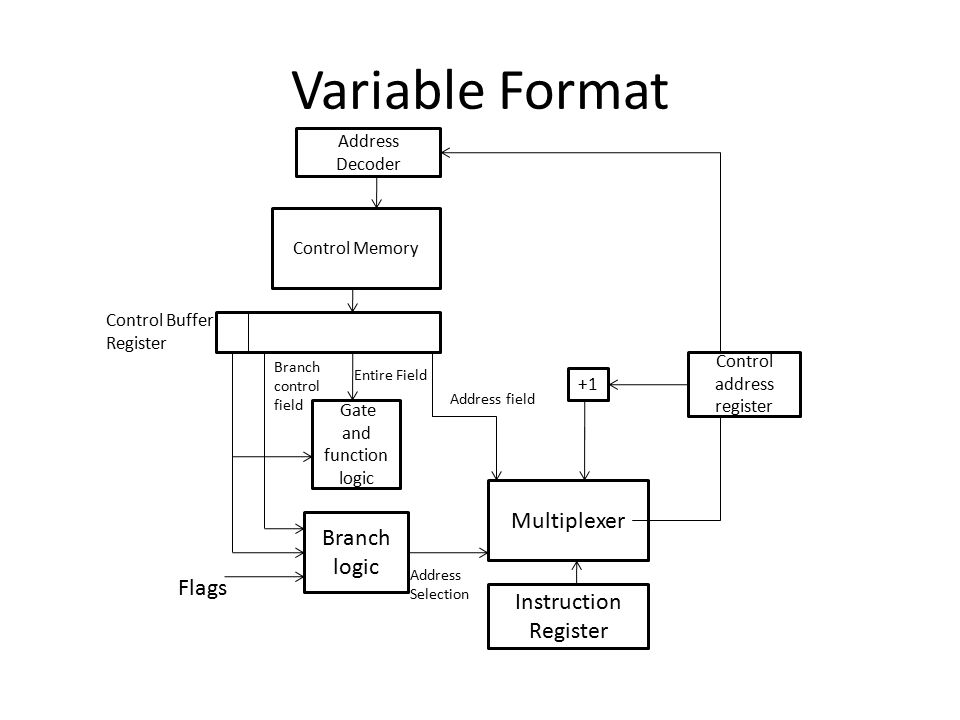 Variable Format Address Decoder Control Memory Gate and function logic +1 Control address register Branch logic Multiplexer Instruction Register Flags