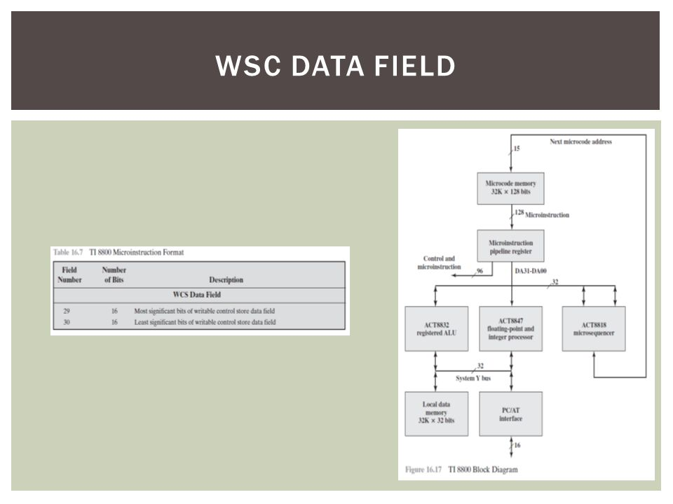 WSC DATA FIELD