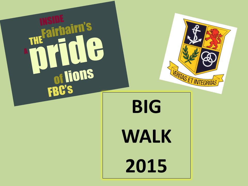 BIG WALK 2015