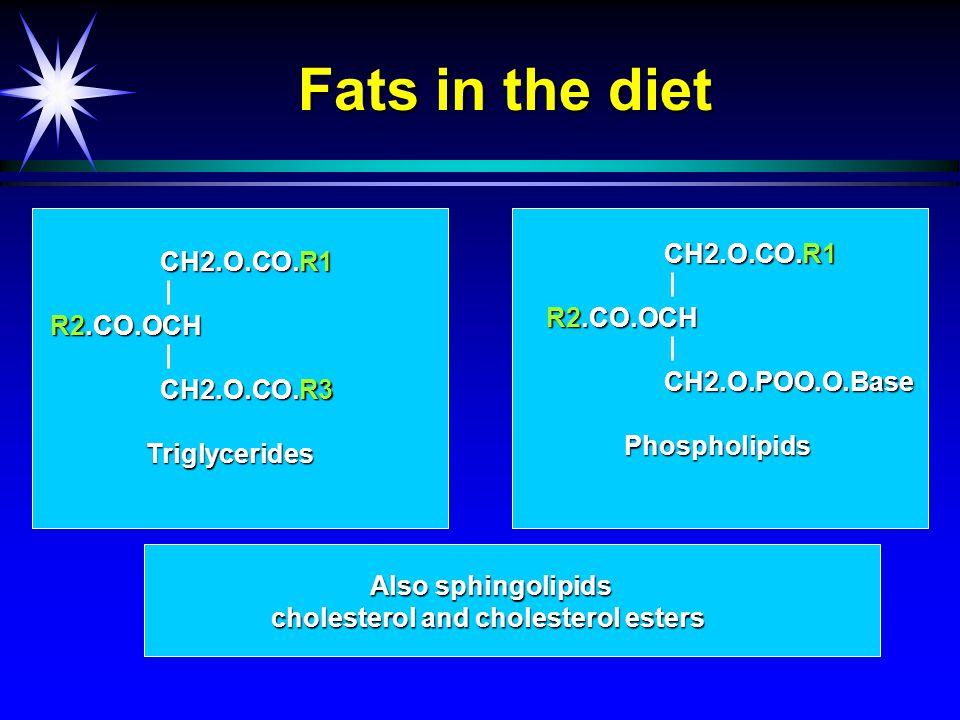 Fats in the diet CH2.O.CO.R1 CH2.O.CO.R1 R2.CO.OCH CH2.O.CO.R3 CH2.O.CO.R3 Triglycerides Also sphingolipids cholesterol and cholesterol esters CH2.O.CO.R1 CH2.O.CO.R1 R2.CO.OCH CH2.O.POO.O.Base CH2.O.POO.O.Base Phospholipids