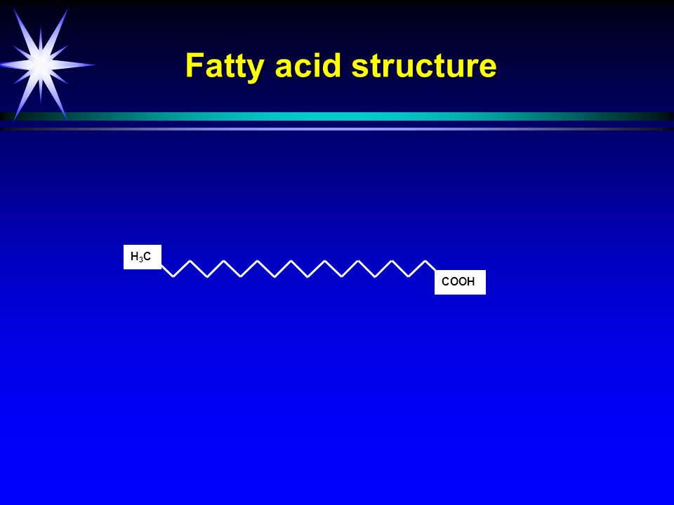 COOH H3CH3C Fatty acid structure
