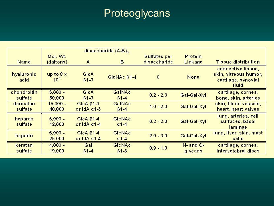 Proteoglycans