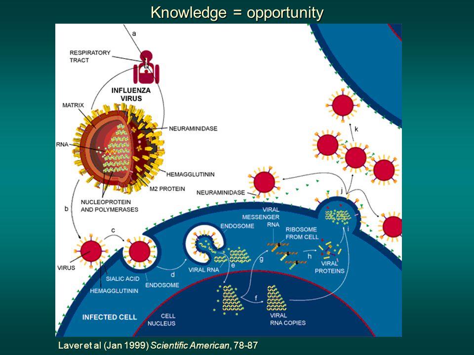Knowledge = opportunity Laver et al (Jan 1999) Scientific American, 78-87