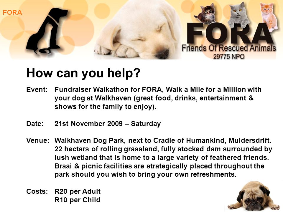 You can also make a donation: Account Name: FORA Bank: Nedbank Branch: Florida 190541 Acccount Number: 1905 151 209 Type of Account: Current For more information about FORA visit: www.fora.org.za