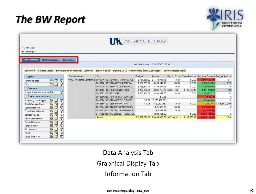 Check and Execute BW Web Reporting - BEX_300 18 Execute When there are no errors, click on the Execute button to run your report. Be patient while you