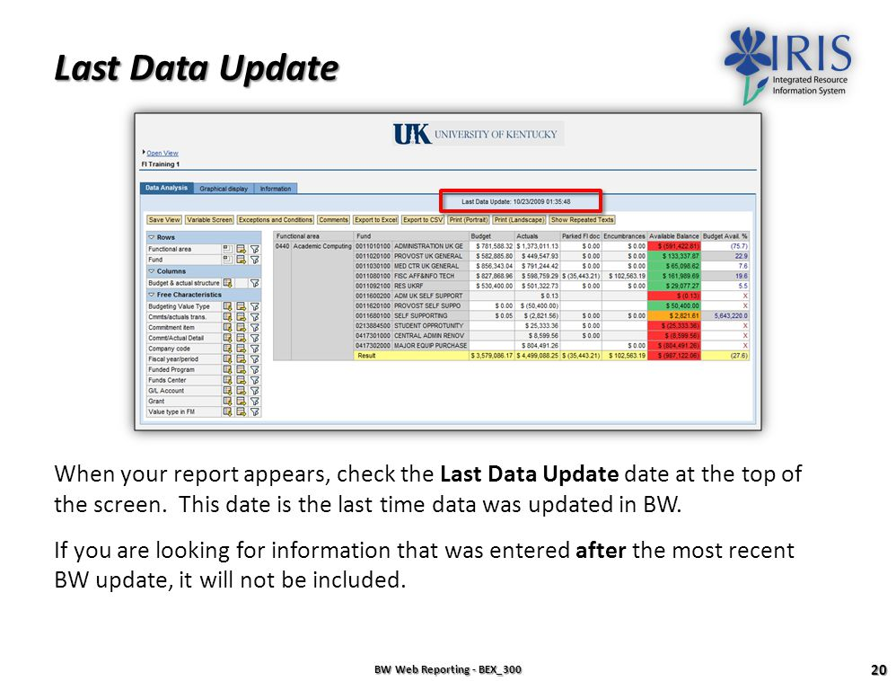 The BW Report BW Web Reporting - BEX_300 19 Data Analysis Tab Graphical Display Tab Information Tab