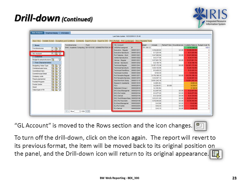 Drill-down BW Web Reporting - BEX_300 22 Drill-down adds a breakdown of data horizontally (in rows). Example: To show GL Accounts in rows, click the D
