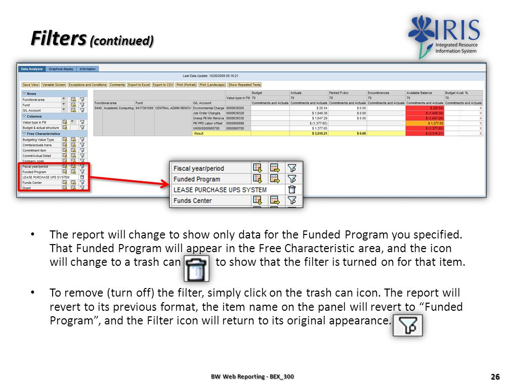 Filters BW Web Reporting - BEX_300 25 Filters can be added to narrow your query to very specific data. Example: To see only a particular Funded Progra
