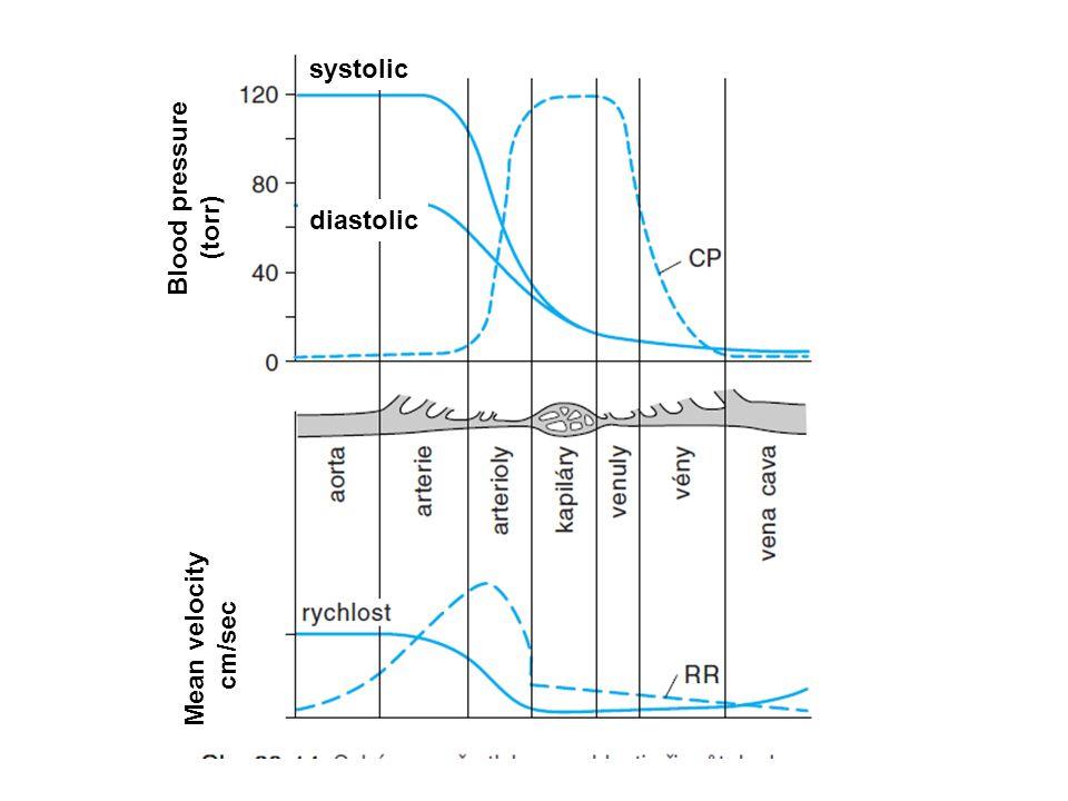 systolic diastolic Blood pressure (torr) Mean velocity cm/sec