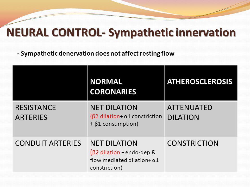 NEURAL CONTROL- Sympathetic innervation NORMAL CORONARIES ATHEROSCLEROSIS RESISTANCE ARTERIES NET DILATION (β2 dilation+ α1 constriction + β1 consumption) ATTENUATED DILATION CONDUIT ARTERIESNET DILATION ( β2 dilation + endo-dep & flow mediated dilation+ α1 constriction) CONSTRICTION - Sympathetic denervation does not affect resting flow