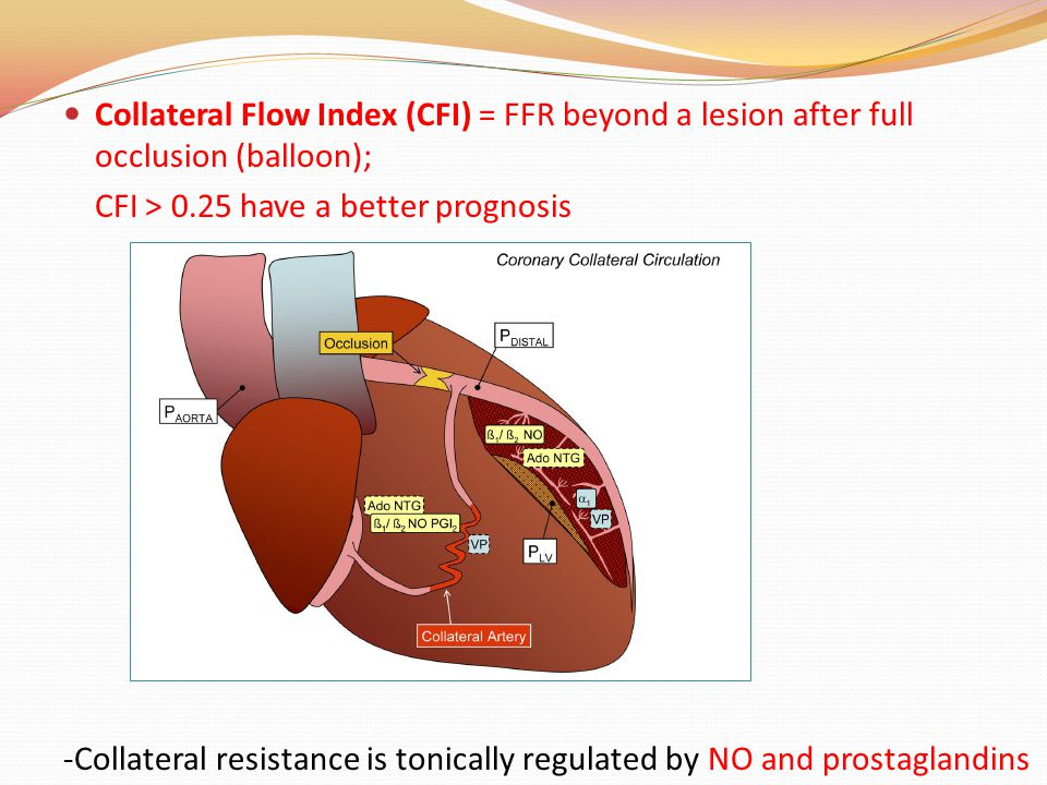 Collateral Flow Index (CFI) = FFR beyond a lesion after full occlusion (balloon); CFI > 0.25 have a better prognosis -Collateral resistance is tonically regulated by NO and prostaglandins