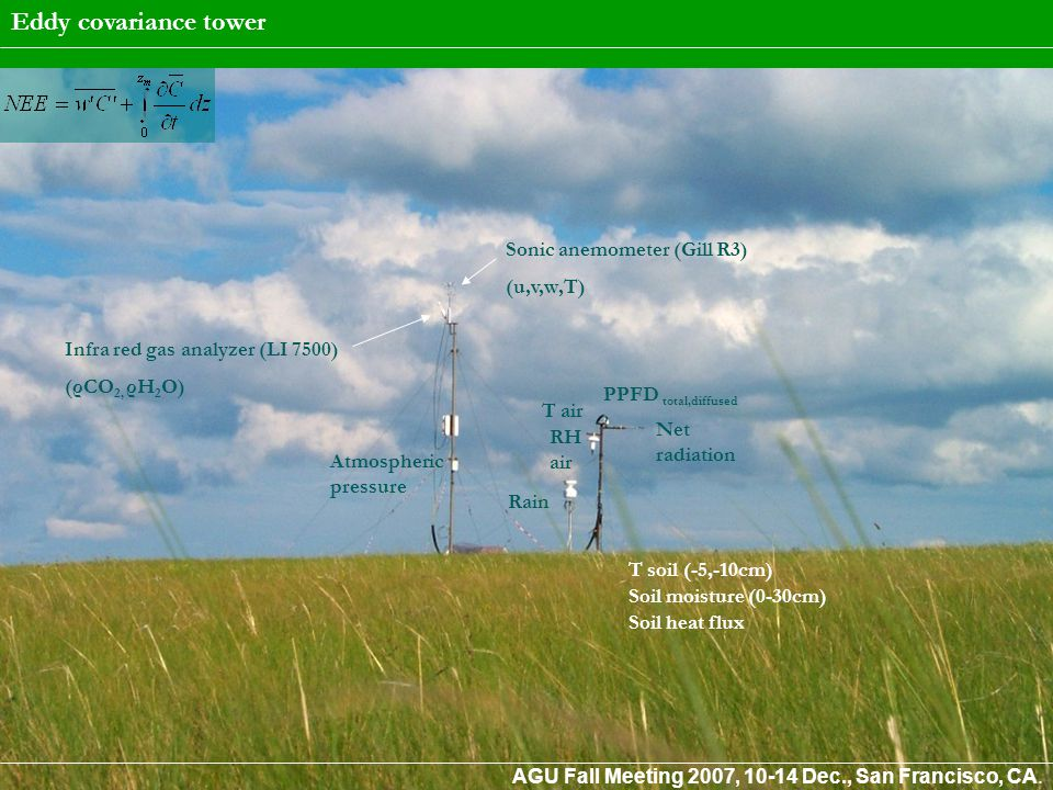 Belowground processes in steppe ecosystems account for a pre-eminent part of the carbon exchange: in particular efforts to better quantify the dynamics of root biomass (growth and turnover) have to be undertaken in order to reduce the uncertainties in the assessment of NPP.
