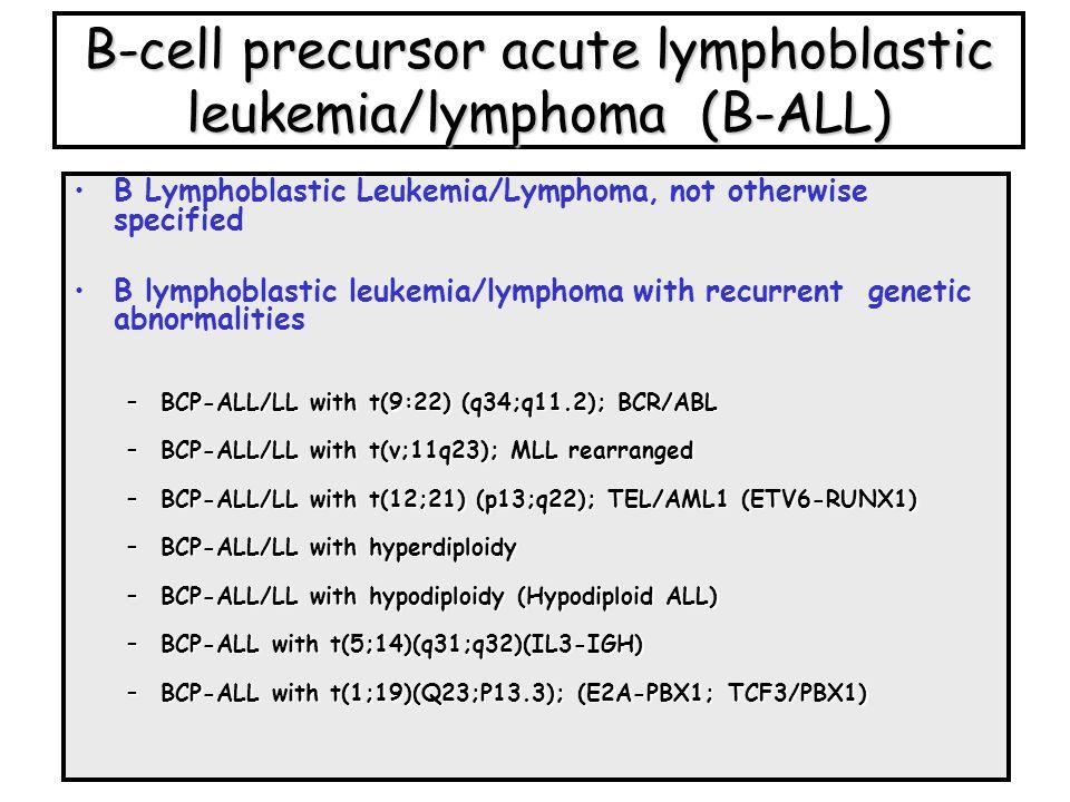 B-cell precursor acute lymphoblastic leukemia/lymphoma (B-ALL) B Lymphoblastic Leukemia/Lymphoma, not otherwise specified B lymphoblastic leukemia/lym