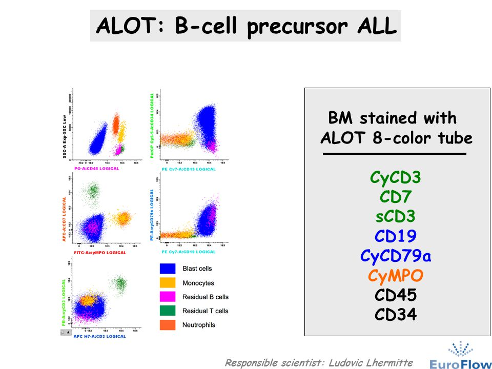 BCP-ALL panel Maturation stage (EGIL) ALOT BCP-ALL