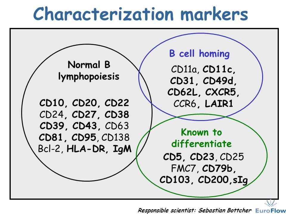 Characterization markers CD10, CD20, CD22 CD24, CD27, CD38 CD39, CD43, CD63 CD81, CD95, CD138 Bcl-2, HLA-DR, IgM Normal B lymphopoiesis CD11a, CD11c,