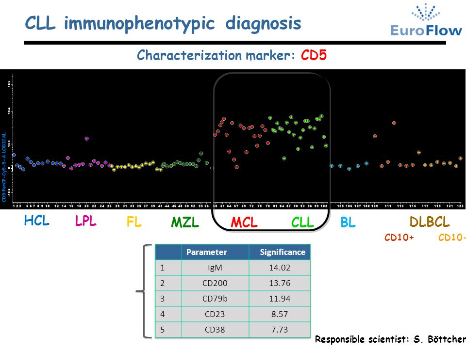 Characterization marker: CD5 MZLMCL HCL LPL FL CLL DLBCL BL CLL immunophenotypic diagnosis CD10+CD10- Best 5 markers for the DD between CLL and MCL ac