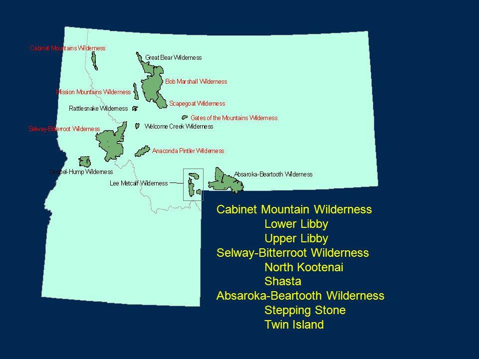 Cabinet Mountain Wilderness Lower Libby Upper Libby Selway-Bitterroot Wilderness North Kootenai Shasta Absaroka-Beartooth Wilderness Stepping Stone Twin Island