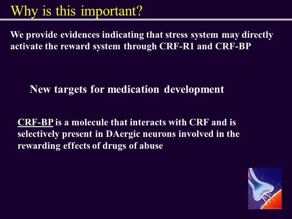 Why is this important? We provide evidences indicating that stress system may directly activate the reward system through CRF-R1 and CRF-BP New target