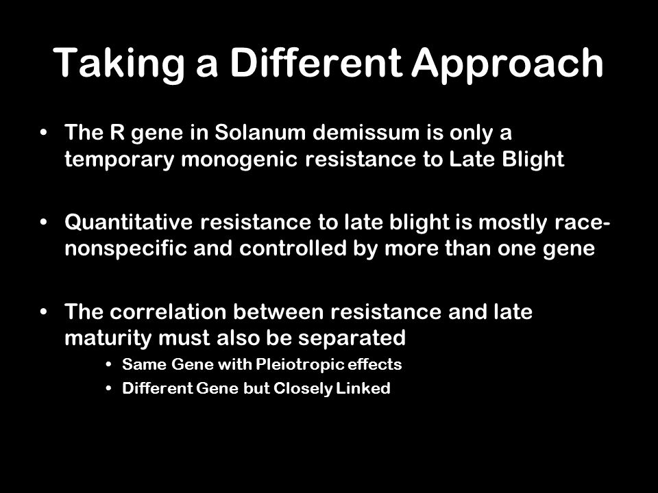 Taking a Different Approach The R gene in Solanum demissum is only a temporary monogenic resistance to Late Blight Quantitative resistance to late blight is mostly race- nonspecific and controlled by more than one gene The correlation between resistance and late maturity must also be separated Same Gene with Pleiotropic effects Different Gene but Closely Linked