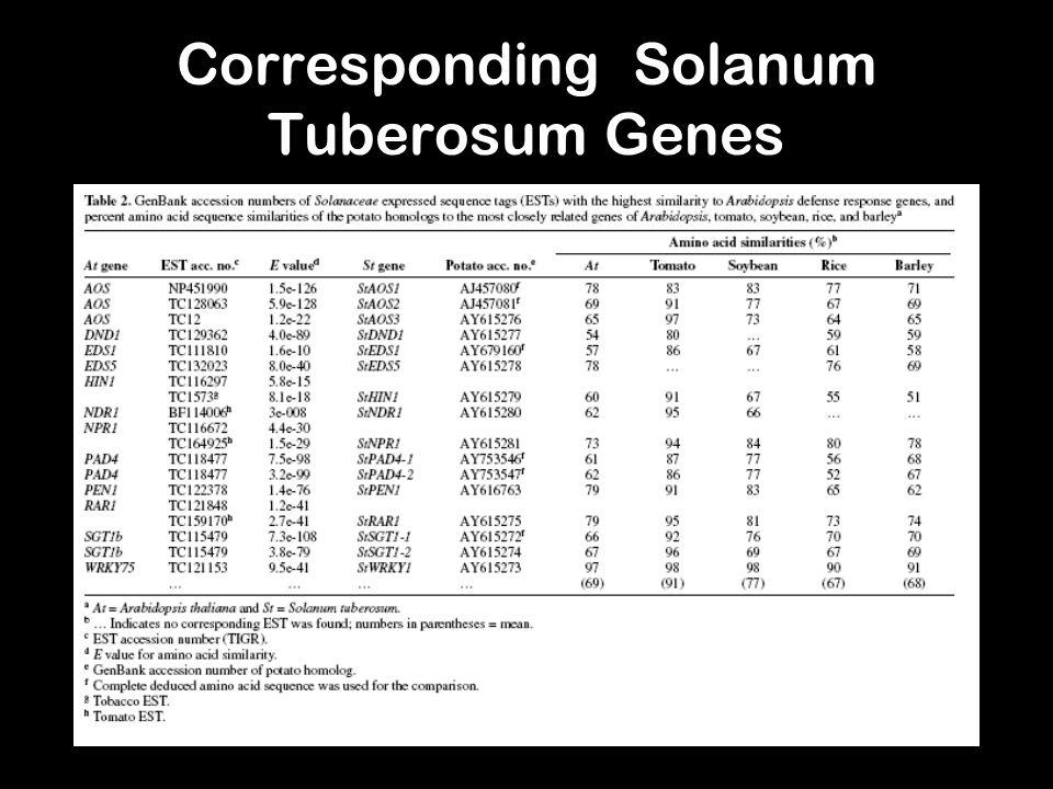 Corresponding Solanum Tuberosum Genes