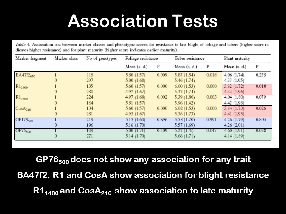 Association Tests GP76 500 does not show any association for any trait BA47f2, R1 and CosA show association for blight resistance R1 1400 and CosA 210 show association to late maturity