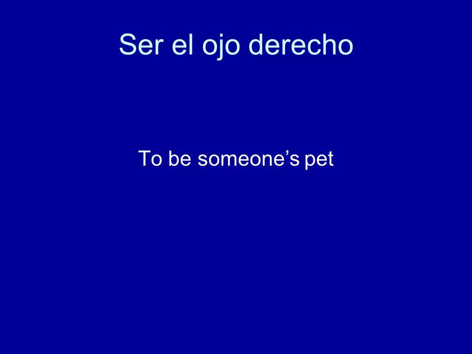Ser el ojo derecho To be someone's pet