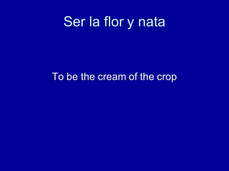 Ser la flor y nata To be the cream of the crop