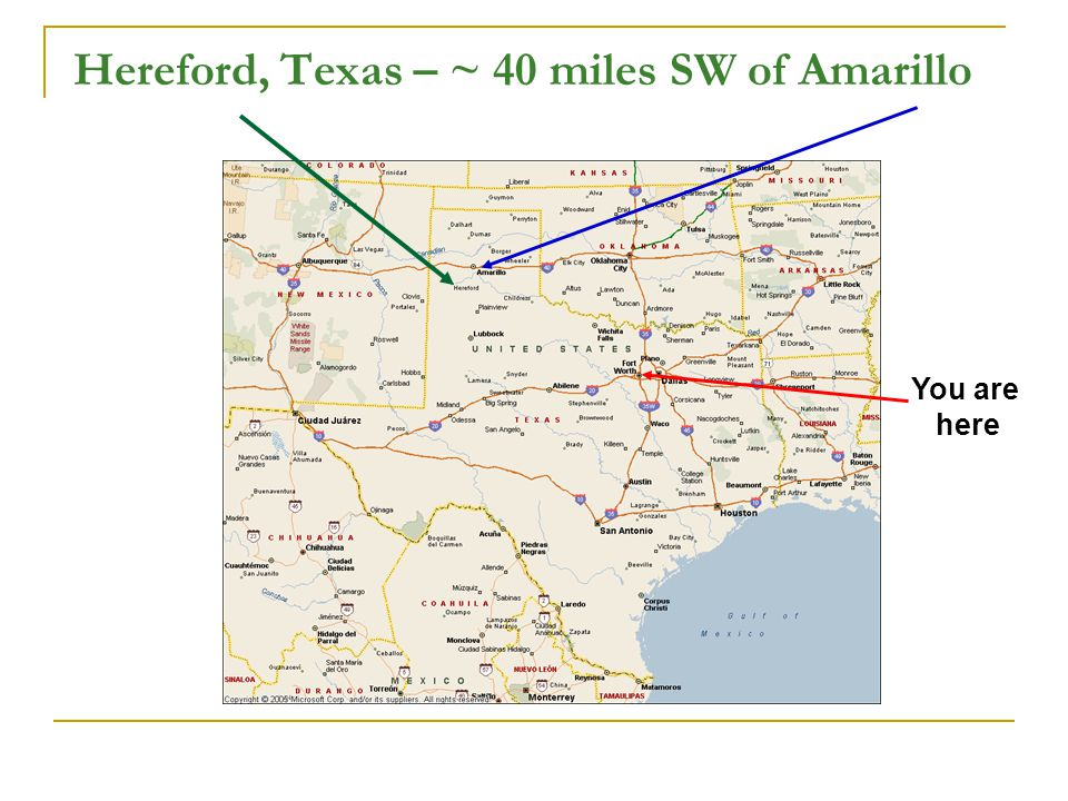 Hereford, Texas – ~ 40 miles SW of Amarillo You are here