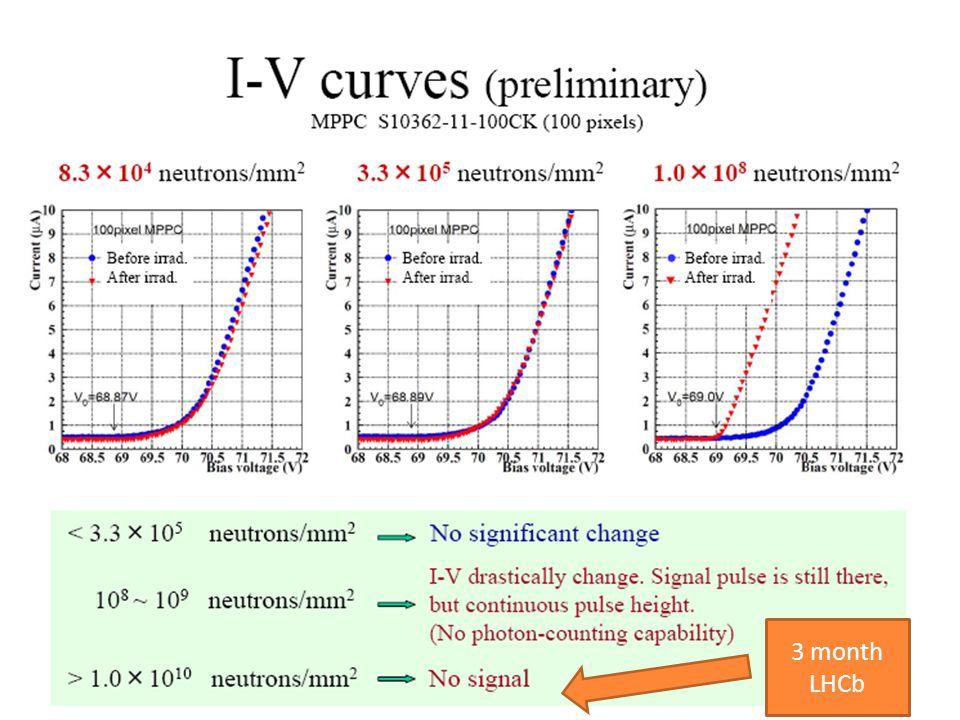 21 3 month LHCb