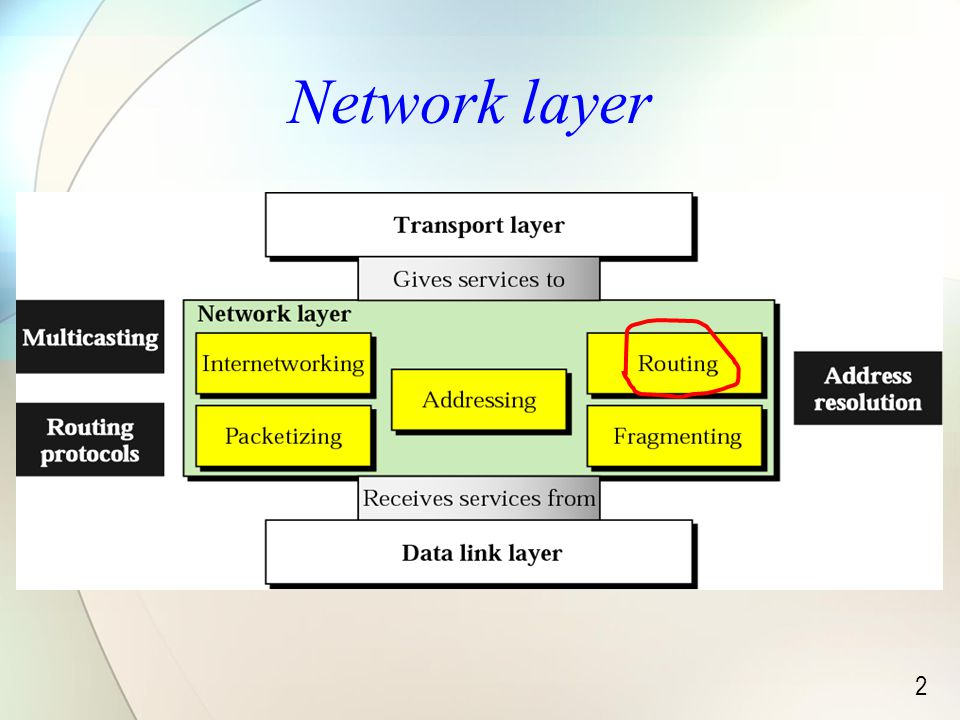 2 Network layer