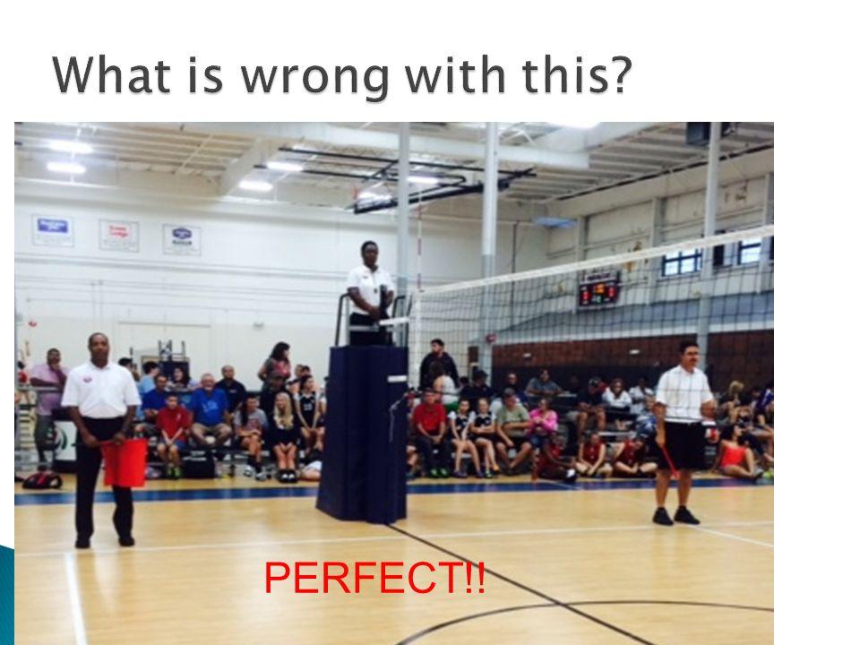 PERFECT!!