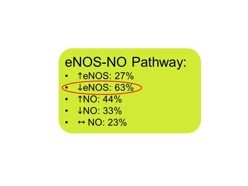 eNOS-NO Pathway:  eNOS: 27%  eNOS: 63%  NO: 44%  NO: 33%  NO: 23%