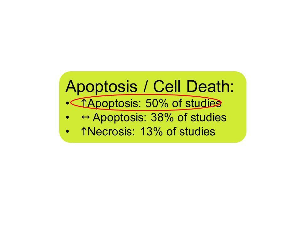 Apoptosis / Cell Death:  Apoptosis: 50% of studies  Apoptosis: 38% of studies  Necrosis: 13% of studies