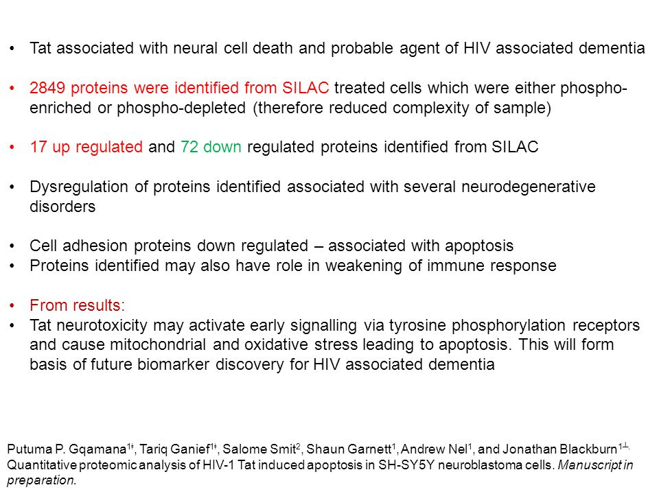 Tat associated with neural cell death and probable agent of HIV associated dementia 2849 proteins were identified from SILAC treated cells which were either phospho- enriched or phospho-depleted (therefore reduced complexity of sample) 17 up regulated and 72 down regulated proteins identified from SILAC Dysregulation of proteins identified associated with several neurodegenerative disorders Cell adhesion proteins down regulated – associated with apoptosis Proteins identified may also have role in weakening of immune response From results: Tat neurotoxicity may activate early signalling via tyrosine phosphorylation receptors and cause mitochondrial and oxidative stress leading to apoptosis.