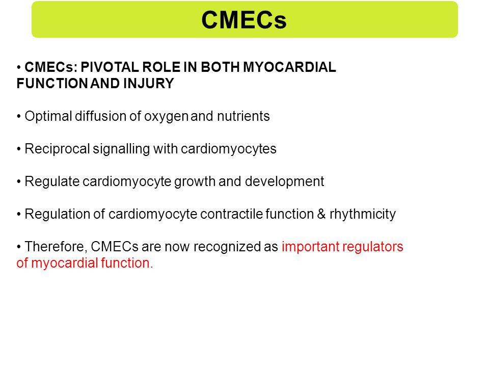 CMECs CMECs: PIVOTAL ROLE IN BOTH MYOCARDIAL FUNCTION AND INJURY Optimal diffusion of oxygen and nutrients Reciprocal signalling with cardiomyocytes Regulate cardiomyocyte growth and development Regulation of cardiomyocyte contractile function & rhythmicity Therefore, CMECs are now recognized as important regulators of myocardial function.