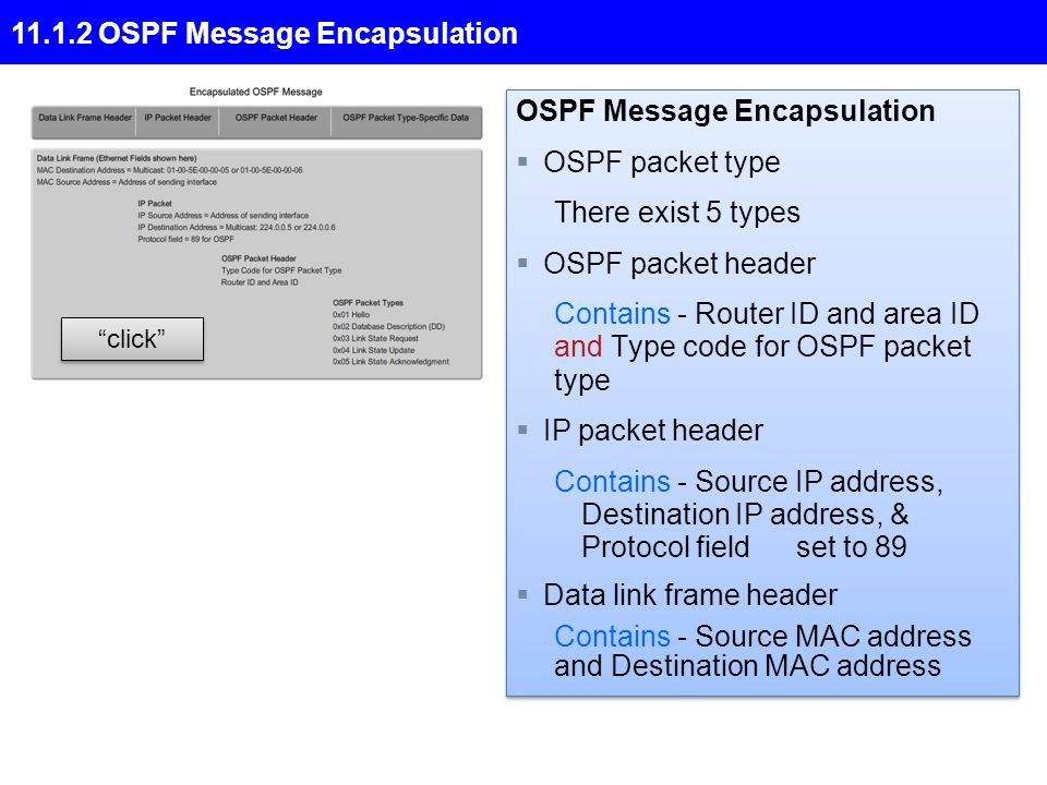 11.1.2 OSPF Message Encapsulation click